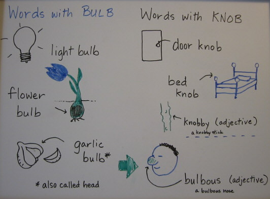 words with BULB and KNOB